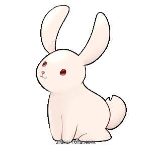 15種動物キャラ占い【ウサギ】|無料性格・仕事・恋愛・相性診断