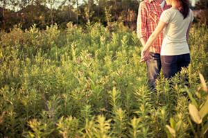 姓名判断で結婚占い - カップル限定恋人診断