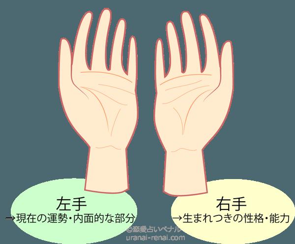 手相左手右手